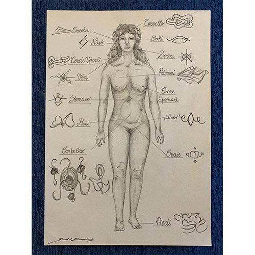 Energia del corpo femminile