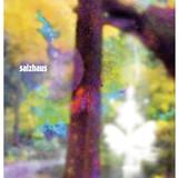 Salzhaus Plakat