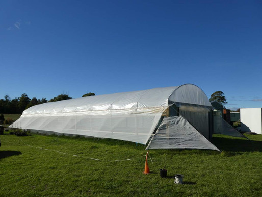 Poly tunnels on a budget