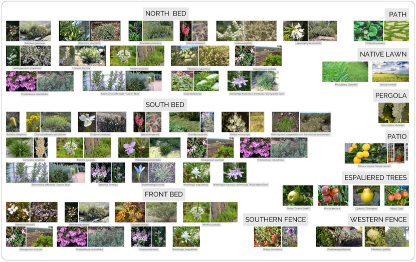 L032_Planting-Palette.jpg