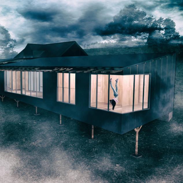 Fog and wings_edited.jpg