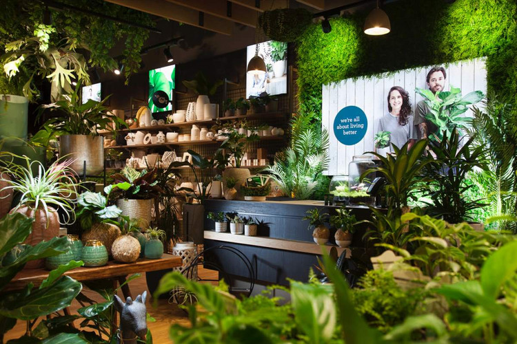 Inside the Gro Urban Oasis store at Warr