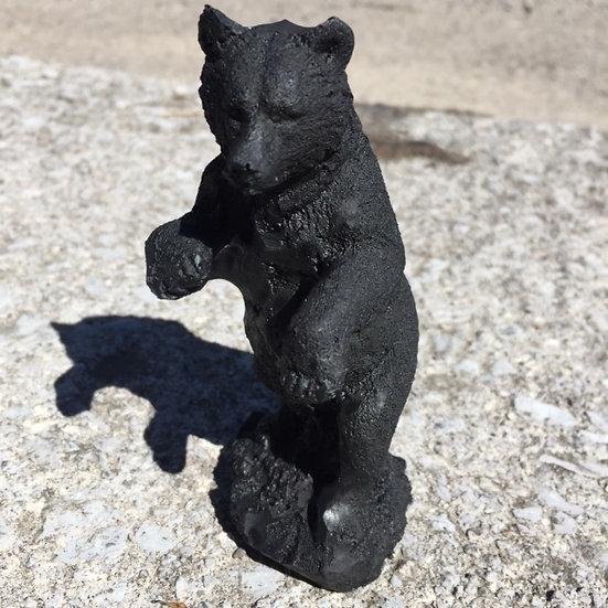 Bear, Standing