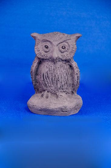 Owl, small
