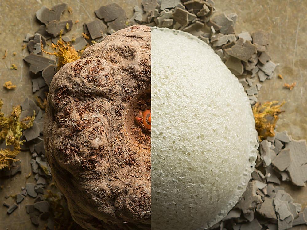 The The Original Konjac Sponge | Handmade from 100% Natural Plant Fibre