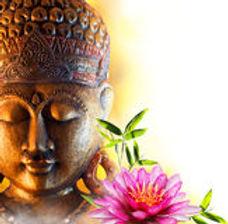 statue-buddha-zen-water-lily-bamboo-4611