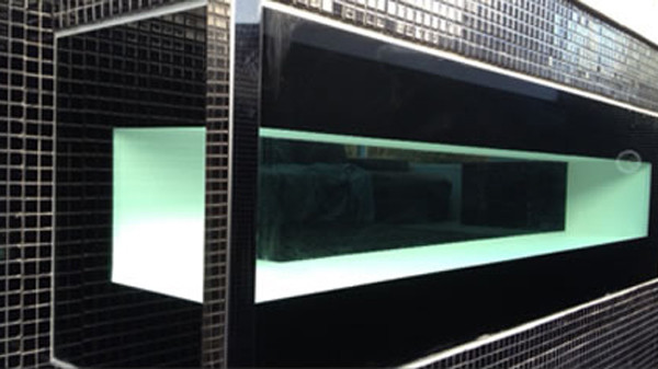 Pool window with painted blkack interlayer and lack tiles around pool