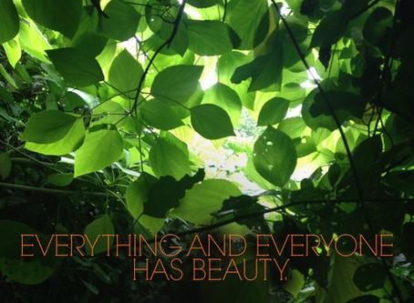 Todos y Todo tiene belleza.