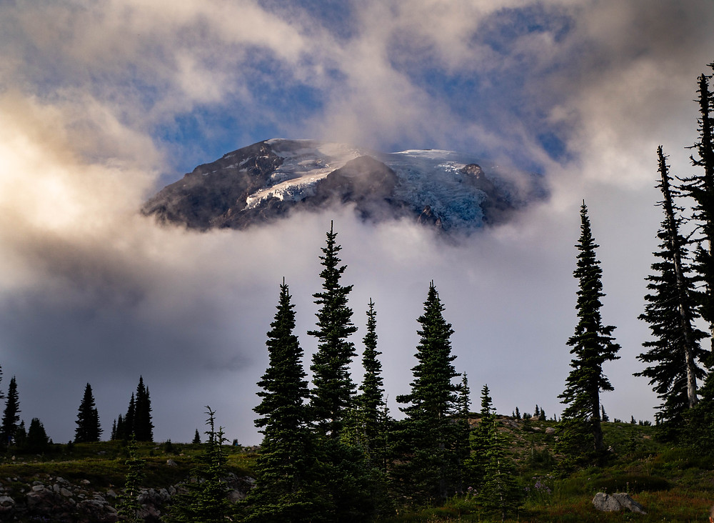 clouds break to reveal Mount Rainier with a forest in the foreground with pines