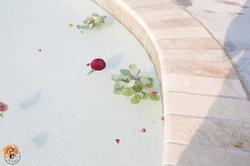 Pool Blooms