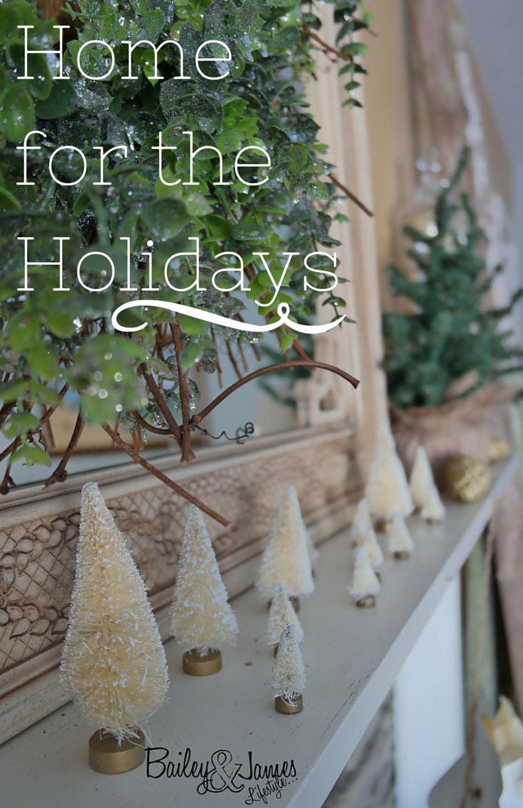 Home for the Holidays-Christmas Decor