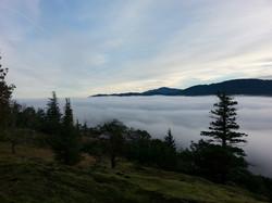 Hiking in Nanoose Bay, BC