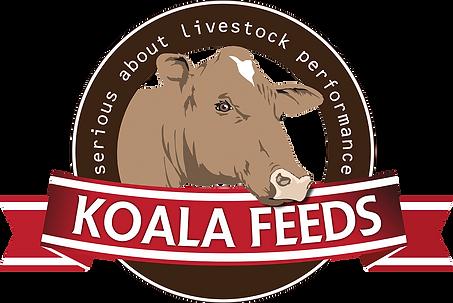 Koala Feeds Logo - Small.png
