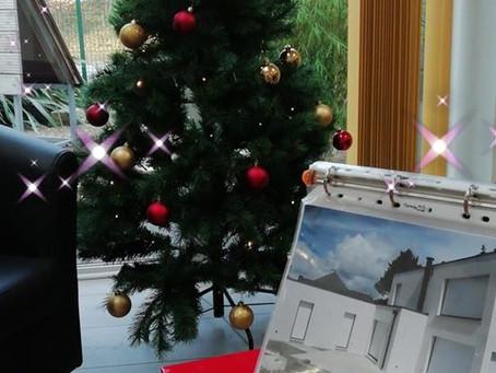 A l'approche des fêtes de fin d'année Armoric Menuiserie à sortie son beau sapin de Noël. A