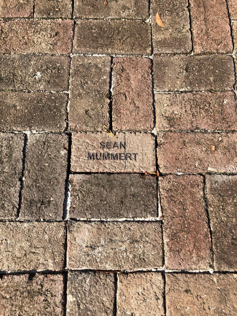 CMD Brick Walkway