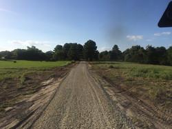 Road, Trinity Texas