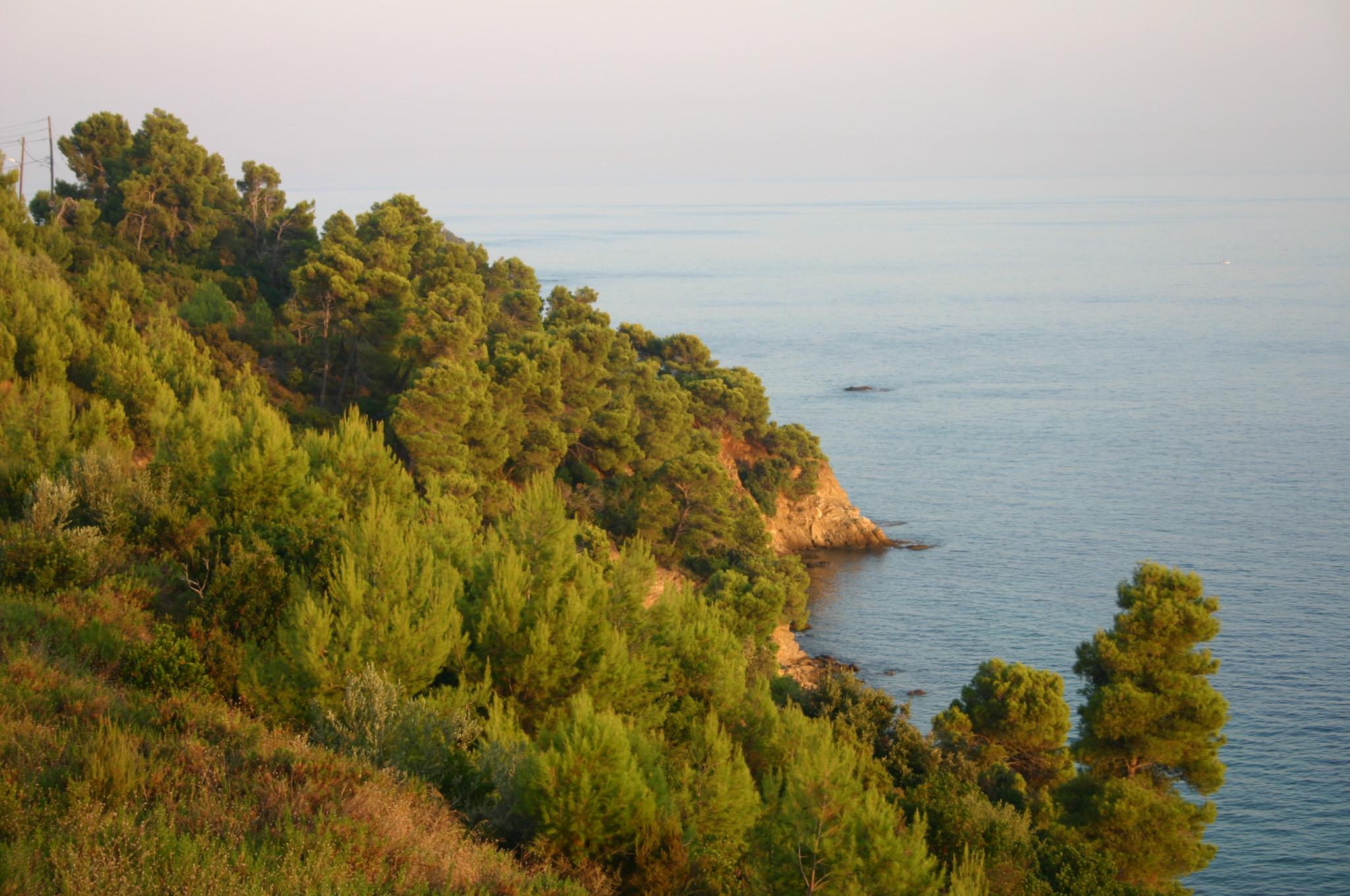 Cape Amoni