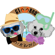 gi summer logo.png