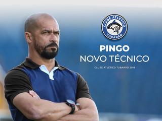 Pingo é o novo técnico do Tubarão