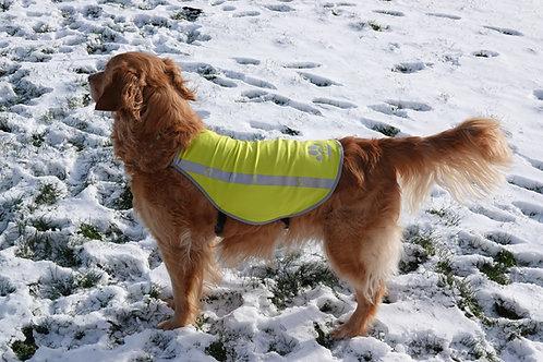 Gilet jaune pour chien