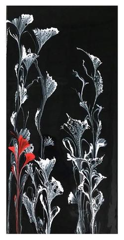 A Poppy of Color (2019).jpg