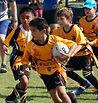 al ain amblers rugby club