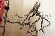 _MG_4206 Charcoal Root full med.jpg