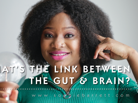 What's the link between the gut & brain?