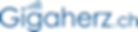 logo-gigaherz.png