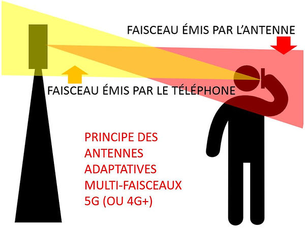 Antennes multifaisceaux.JPG