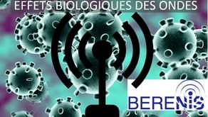 Newsletter de BERENIS sur les effets biologiques des ondes