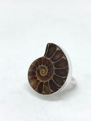 Ammonite Ring .925