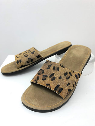 Resort Slides Clouded Leopard