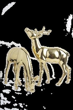 Deer Pair 2