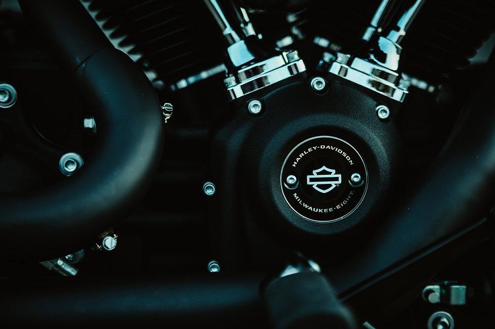 Harley19.jpg