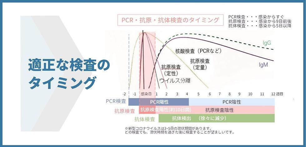 reallygreatsite.comのコピー (17).jpg
