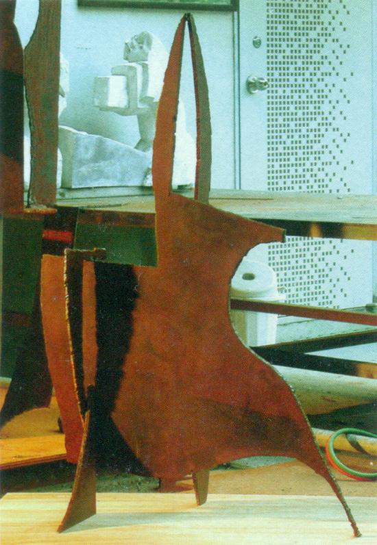 Female Don Quixote