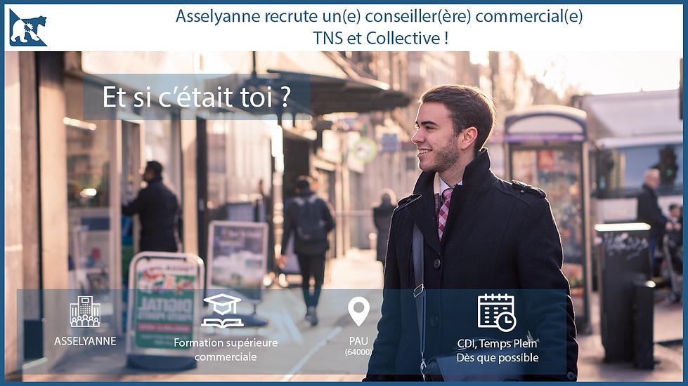 Annonces_Recrutement_Asselyanne.png