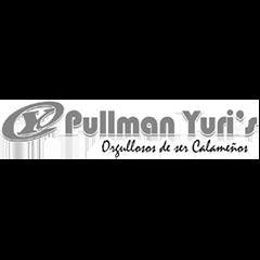 BN Pullman Yuris.png