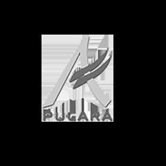 BN Pucara.png