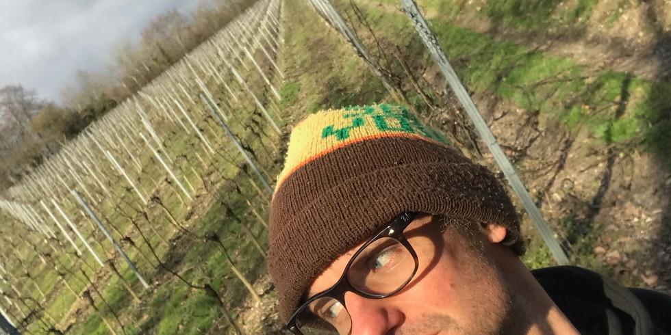 10th Anniversary Vineyard Tours with David Line
