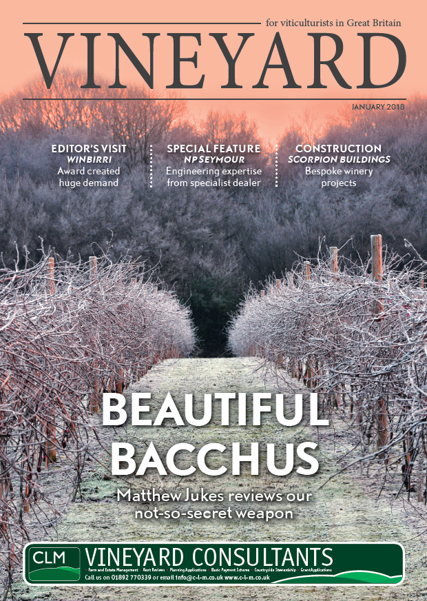 Vineyard Magazine Reviews