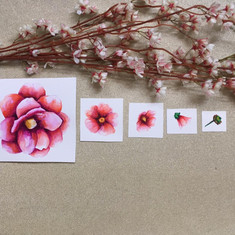 Set of Watercolor flowers