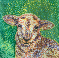 Gouache Painting - sheep