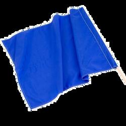 Blue Flag Race