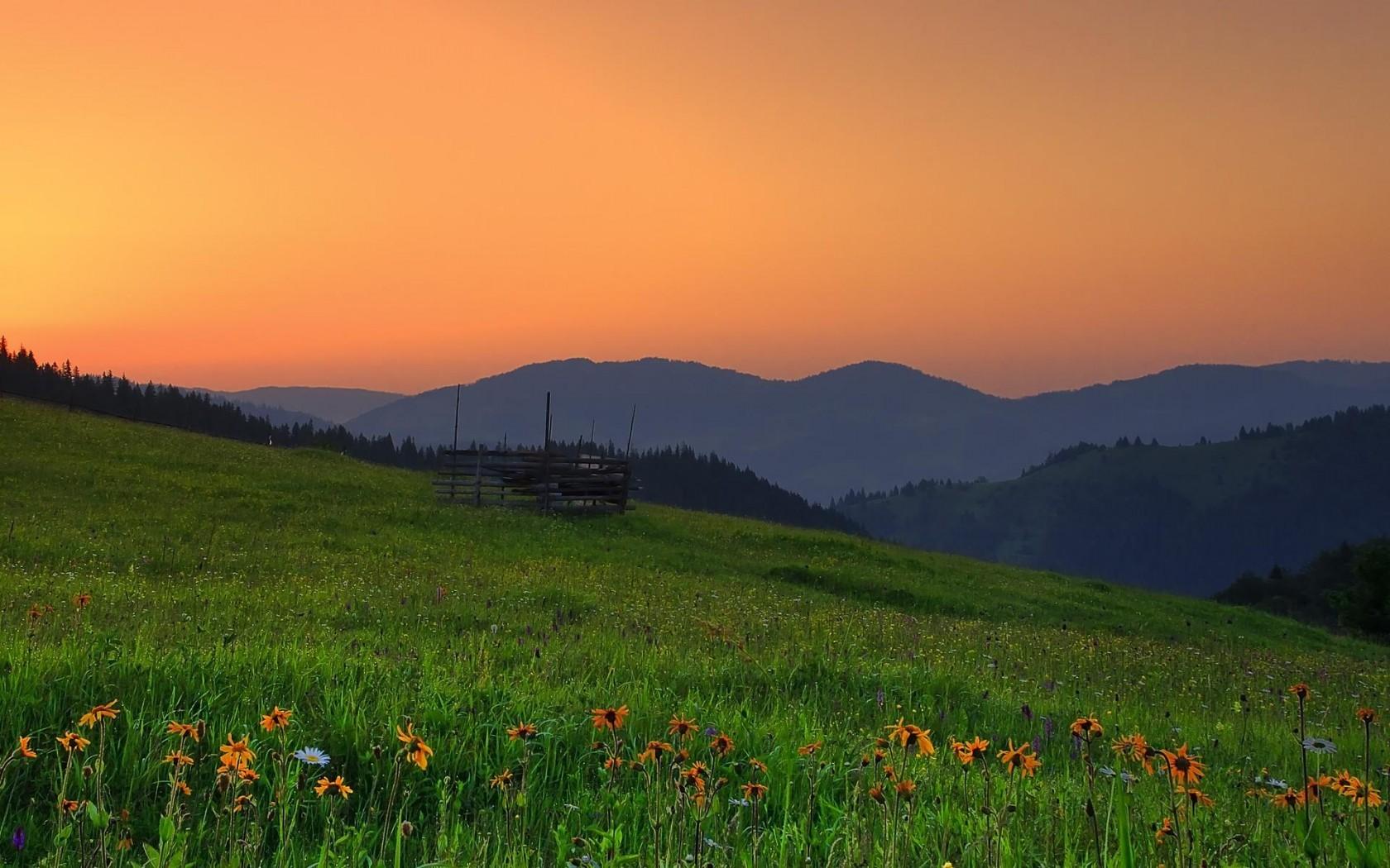 1680x1050_romania_hills_sunset_field_flowers_landscape_photos