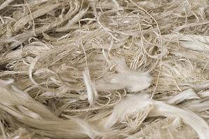 asbestos fibres 2016.jpg