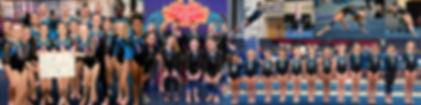 girls competitive gymnastics