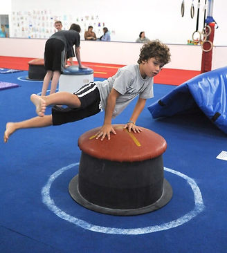 Boy on Pommel