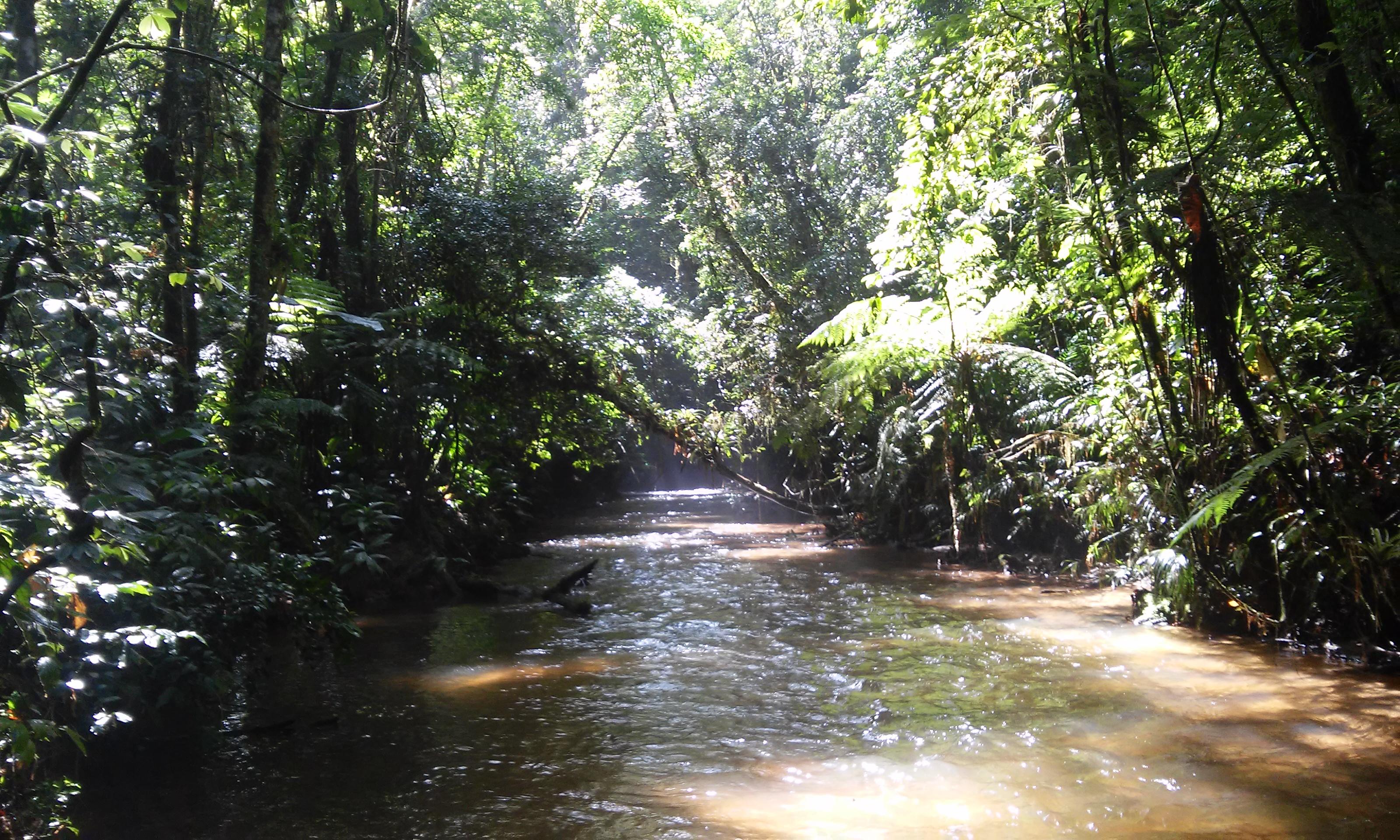 Ribeirão Belchior
